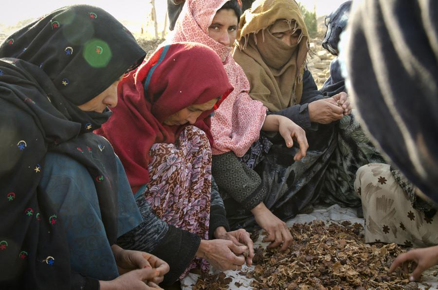 अफगानिस्तानका आधा मानिसलाई मानवीय सहायतको आवश्यकता :राष्ट्रसङ्घ